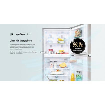 PANASONIC Refrigerator NR-BL263VPMY 234L
